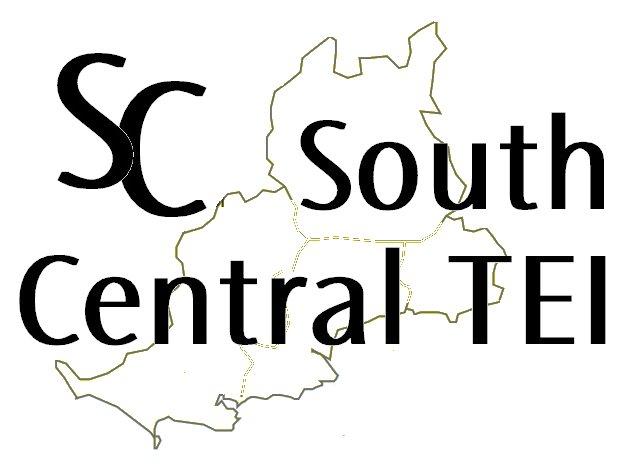 SCTEI Logo